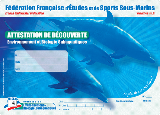 carte attestation decouverte 1